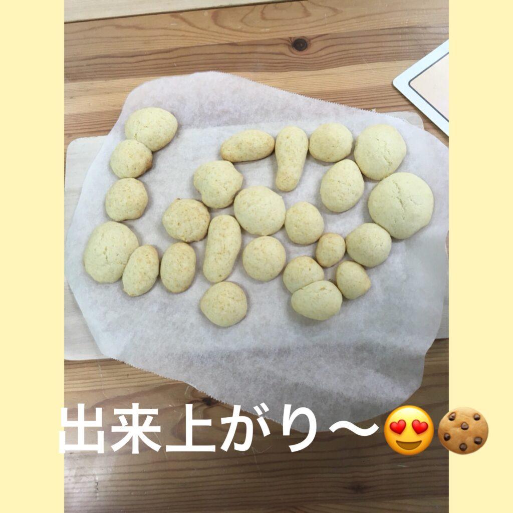 1月5日 クッキー作り プレーン味